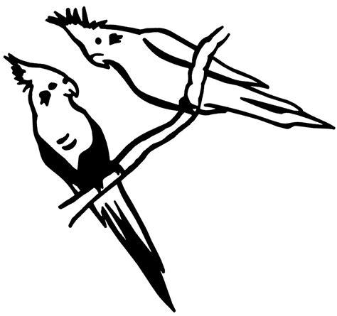 bird window decals