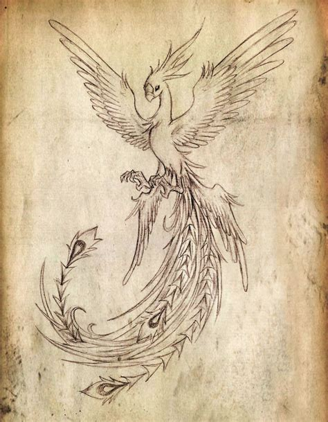 phoenix bird tattoo designs bird newhairstylesformen2014