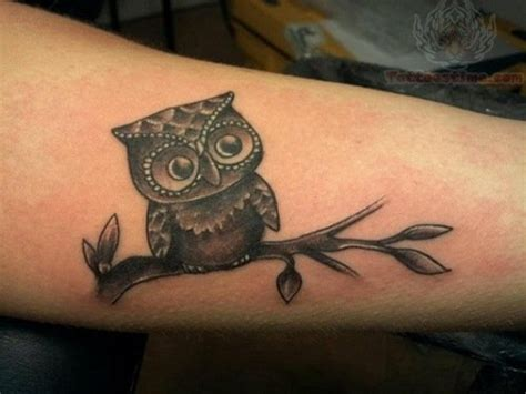 owl tattoos small small owl sitting on branch