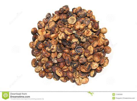 White Coffee Luwak 1 Karton kopi luwak stock photos image 17493393