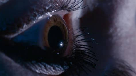 the eyes of the the eyes have it doctor who the who died eruditorum press