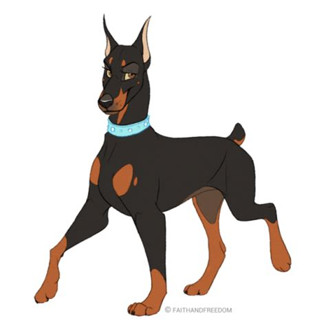 doberman colors doberman colors