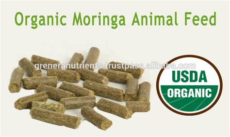 8 protein feed organic protein powder for poultry feed buy poultry