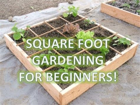 How to build a garden box: square foot gardening   YouTube