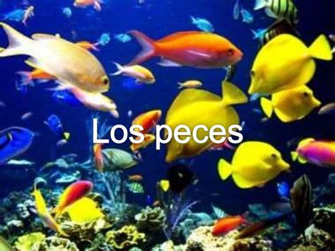 los peces de la 8483835460 los peces