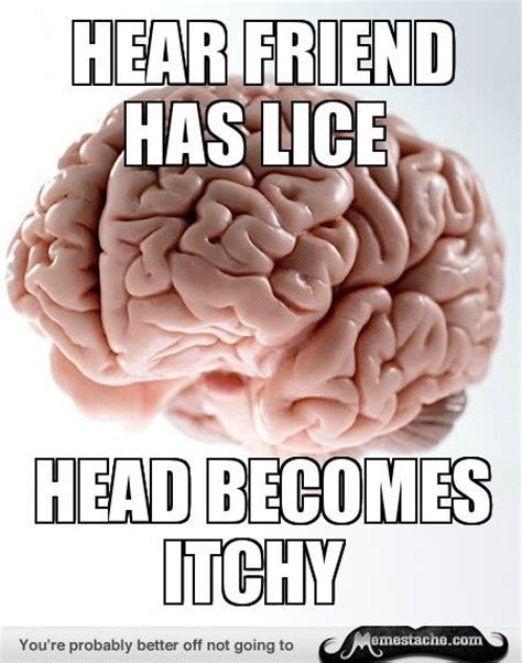 Scumbag Brain Meme Generator - 22 best lice humor images on pinterest