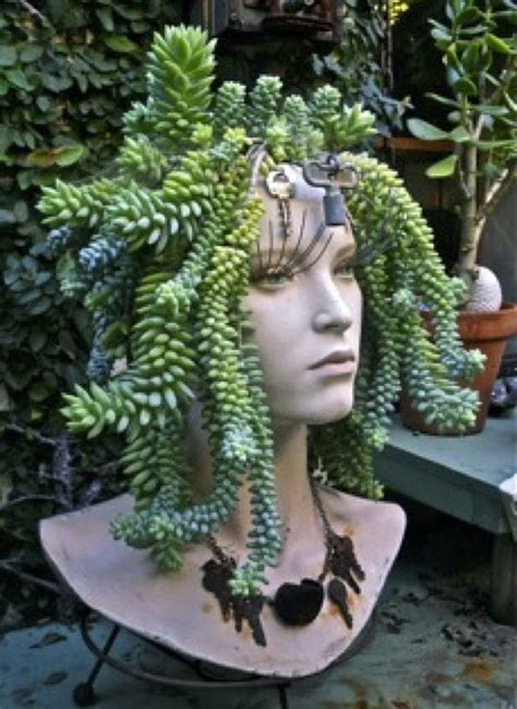medusa planter creative indoor and outdoor succulent garden ideas 2017
