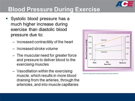 image result  normal blood pressure  exercise