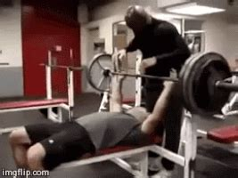 bench press gif bench press gifs find share on giphy