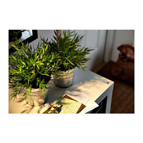 Ikea Fejka Tanaman Tiruan Dalam Luar Ruang Uk 26x26cm Hijau Ungu ikea fejka tanaman tiruan pogonatherum dalam p o t 10 cm elevenia