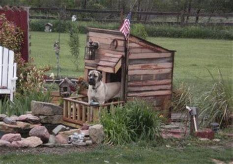 how do you make a dog house 11 diy pallet doghouse ideas diy to make