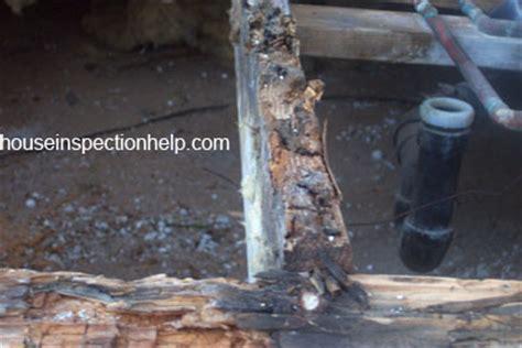 Water Damaged Floor Joists by Floor Joist Wood Rot