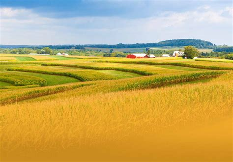 Search Iowa Iowa Car Insurance Quotes Liberty