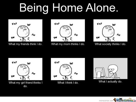 Funny Home Alone Memes - cat funny meme about being alone picture