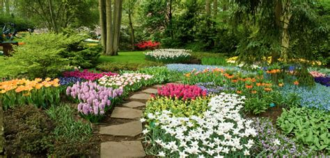 Curb Appeal Ideas Pictures - 10 landscape design ideas for your yard your green team