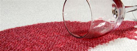 upholstery stain protection heaven s best carpet upholstery cleaning stafford