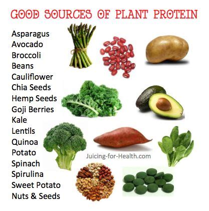 p protein in plants 17 best images about protein on vegetarian