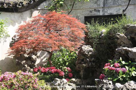 yu garten shanghai bilder china fotos p2 bilder aus