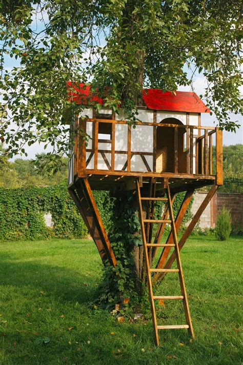 Landscape Structures Treehouse How To Build A Treehouse In The Backyard