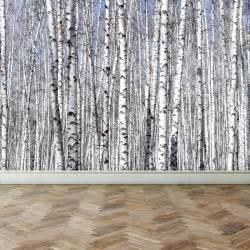 Birch Wall Mural wall mural white birch trees peel and stick repositionable fabric