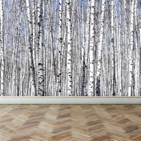 fabric murals for walls wall mural white birch trees peel and stick