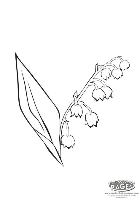 lily of the valley coloring flowers my coloring page