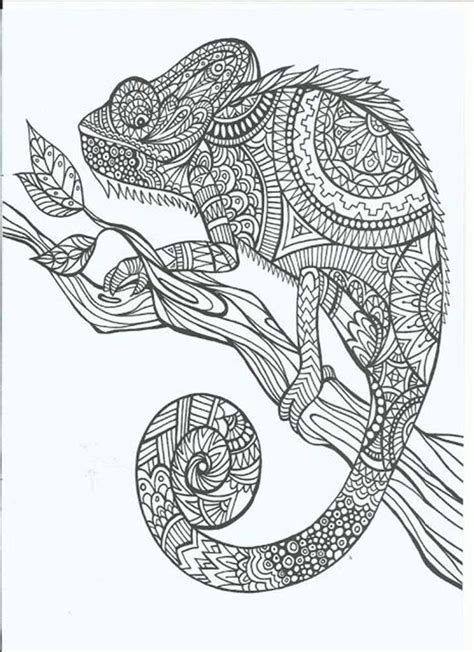 coloring pages for adults hd 13 alucinantes dibujos para colorear para manejar el