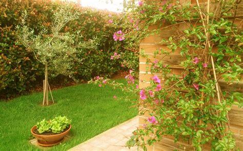 giardini colorati angoli colorati il giardino esuberante agoranews