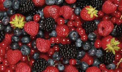 Home Design Remodeling Show superfoods 11 berries to improve your health mnn