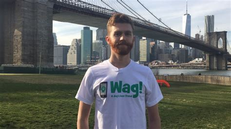 how to become a wag walker become a walker on wag