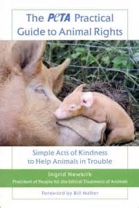 cofounding the right way a practical guide to successful business partnerships books the peta practical guide to animal rights book peta catalog