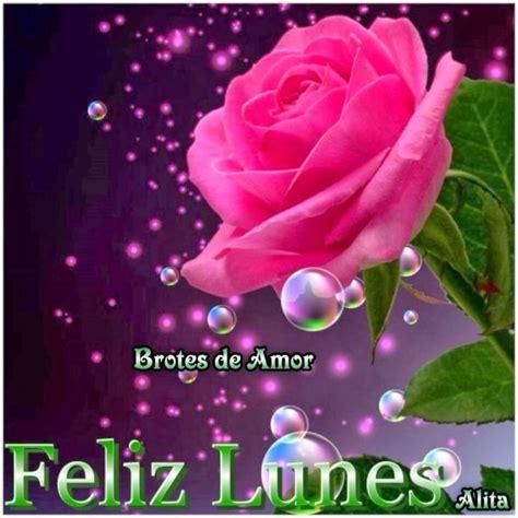 imagenes de rosas feliz lunes amor im 225 genes con flores y frases de fel 237 z lunes para compartir