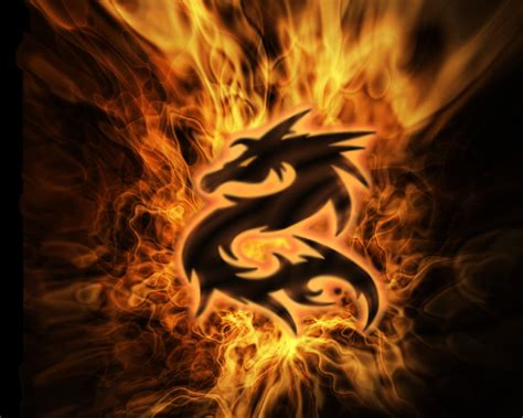 tattoo on pinterest dragon dragon tattoos and fire
