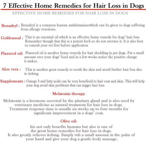 1000 ideas about hair loss on flea
