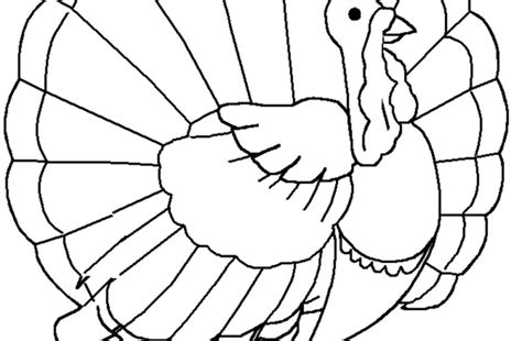 coloring pages of turkeys for preschool turkey head coloring pages