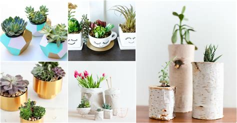 Small Planter Ideas by Small Planter Ideas That Are Absolutely Adorable