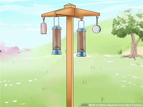 3 ways to deter squirrels from bird feeders wikihow