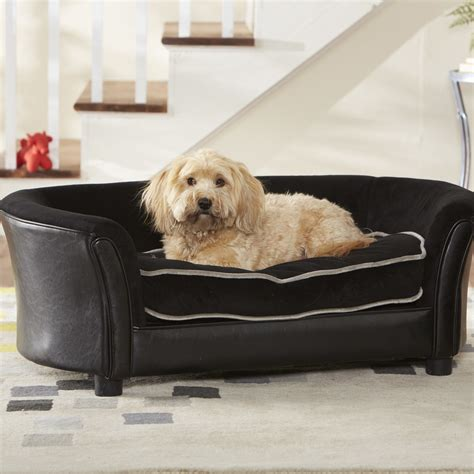 dog couches and beds dog sofa beds australia large dog sofa beds restate co