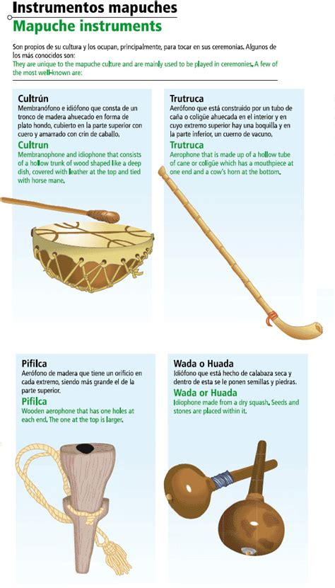 imagenes instrumentos musicales mapuches instrumentos musicales mapuches icarito