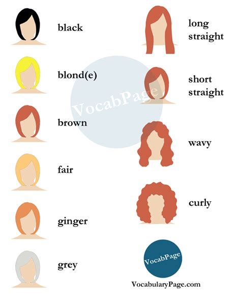 hair style esl beauty salon vocabulary