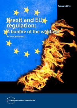 The Bonfire Of The Vanities Summary by Brexit And Eu Regulation A Bonfire Of The Vanities