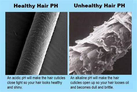 Open Tge Cuticle And Detox by How To Maintain Frizzy Hair Height