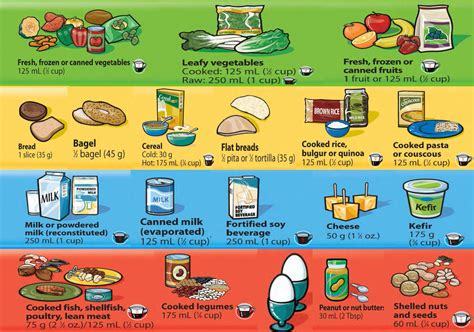 printable version canada s food guide food safety online content