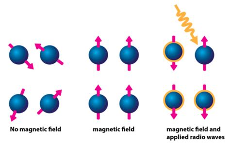 how does proton nmr work 28 magnetic on a proton 188 166 216 143