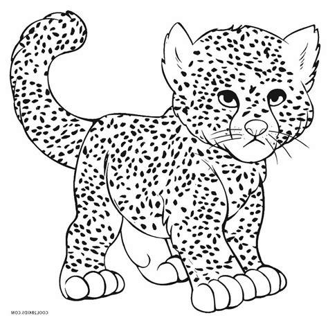 cheetah coloring page printable cheetah print coloring pages cheetah print coloring pages