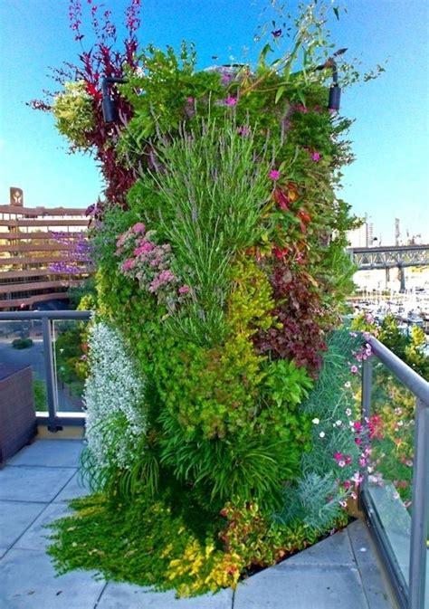 Vertical Garden Toronto 1000 Ideas About Vertical Gardens On