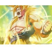 Dragon Ball Z Goku Super Saiyan God Wallpaper  HD4Wallpapernet