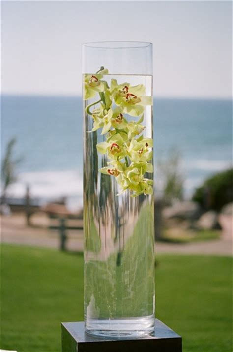 Vase Of Water by Orchids In Vase Of Water Elizabeth Designs The