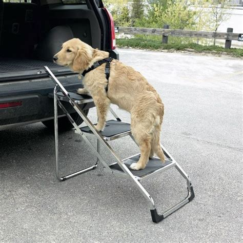 steps for dogs to get into bed 25 best ideas about dog steps on pinterest dog stairs