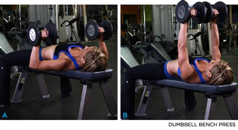 bench pressing with dumbbells bodybuilding com s 10 highest rated chest exercises
